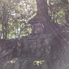 山の神社と韋駄天社