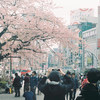 谷中〜上野散歩 ライカに1本目のフィルムを入れて #filmphotography