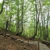 ◆5/5      獅子ヶ鼻湿原③…『出つぼ』『溶岩流末端崖』へ