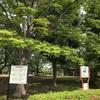 旧倉松公園の藤