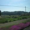 山深い、南九州。