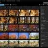 【簡単!】SONY PlayMemories Home レビュー~2021年版~無料の画像管理ソフトウェア~自然写真の管理~