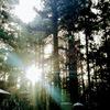 【お誘いです】6/18(金)夜9時 夜の瞑想会(ナイト・ディヤーナ) 天宮 光啓先生 ZOOM 祈り しあわせ 希望 かぎりあるいのち 清浄 浄化 癒し