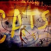 映画「キャッツ」吹き替え版をU-NEXTのキャンペーンで無料で観てきたよ(ネタバレです)
