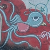 グアテマラの街角の落書きで見つけた国鳥ケツァール~今日の1枚
