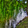HDR photography #1