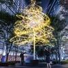 【12/16から】チームラボの新作AR作品!東京駅の「東京ミチテラス2016」で、「君の名は。」の名セリフが空中浮遊!?