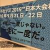 日本人ビジネスパーソンの今年の必須科目!今から準備をはじめる「ラグビー・ワールドカップ」