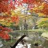 日光紅葉散歩:水面にうつる紅葉を楽しみながら母屋へ