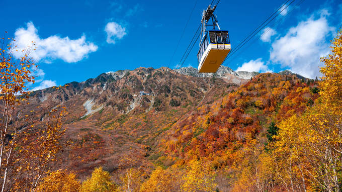 「富山の本気の紅葉お見せします」地元を撮り続ける写真家が、立山黒部をナビゲート