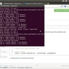 LinuxPCとRaspberry PiでDogeCoinを採掘してみた