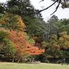 日光紅葉散歩:静かな庭園、色付き始めた松屋敷
