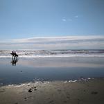 今日は海に行こうと思いマース
