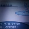【ポケモンBW2】ハルヤのポケモン日記3rd 11日目~vsフウロ~