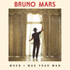 Bruno Mars - When I Was Your Man 歌詞和訳