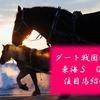 【中京開幕 東海S 2019】中京開幕週 ダートGⅡ東海S 砂の王者離脱