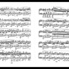 2017/01/27/ショパン ピアノ協奏曲第1番 第2楽章