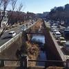 平戸永谷川を歩く 柏尾川上端から源流近くまで