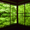 新緑/紅葉の時期におすすめのスポット 京都八瀬瑠璃光院はやはり一見の価値ありです。(Kyoto, Rurikoin)