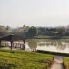 五條市上野公園の池(和歌山県橋本)