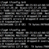 Ubuntu Server Trustyで動かしたLinux KVMで起こった事件