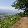松本市のお手軽里山トレランコースを開拓 <城山遊歩道~アルプス公園~芥子坊主公園(往復約10キロ)>
