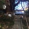 【福島県・南相馬市】日本三大磨崖仏(まがいぶつ)「大悲山(だいひさん)の石仏」に行ったらびっくりしますよー(*´艸`)