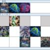 【遊戯王】DDD展開考察 #339(必要札:地獄門、スワラル、ネクロ)