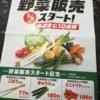 【朗報】セブンイレブンで野菜販売で八百屋化~安い価格ラインナップと学ぶべきビジネス視点~