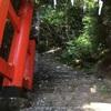 【お盆帰省②】お散歩がてら神倉山へ。その後、近くの仲氷店で 絶品!じゃばらのかき氷☆