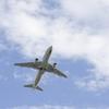 日本からハワイへの航空会社(JAL・ANA)の評判と安全性は?