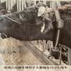 丑年!!繁殖牛でスマート農業(^^♪