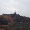 【写真複製・写真修復の専門店】横浜 三溪園の紅葉