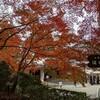 京都大原三千院の紅葉はキレイでした