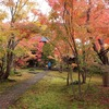 境内一面に広がるカエデの紅葉が美しい 飯山市「称念寺」