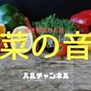 【大阪グルメ】福島の居酒屋『菜の音』見て食べて飲んで楽しめる仕掛けが最高すぎたので報告します!