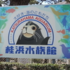 桂浜水族館に初めて行ってきました(上)