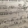講師演奏の練習