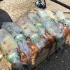 【エギング賛否両論】秋のアオリイカは下手にリリースするよりおいしく食べた方が成仏する理由。