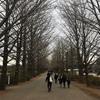 2019 西東京30k in 国営昭和記念公園