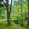 お庭探訪その3:西芳寺(苔寺)庭園