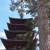 興福寺(こうふくじ):西国三十三所 第九番札所