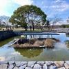 大地の池・水の広場(大阪府吹田)