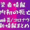 【新型肺炎】コロナウイルスで国内初の死亡か|神奈川県の80歳女性