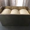 山型食パン チャレンジ2回目 二次発酵に3時間かけて良いのか?
