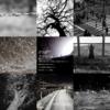 アメブロに「鈴木素肌」さん2019/11/10の詩をご紹介しました。(Instagramでは2019/11/10のものが見れます)