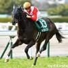 タコイチの【今週の勝負レース】鳴尾記念!
