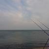 6/10 第24ラウンド 4:00~11:00  石狩湾新港花畔カーブ ガスタンク横  チビガレイ 1匹 17度~27度