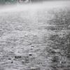 【自動車保険元会社員が教える】大雨で車が浸水したらどうすれば良い?