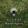【FF14】 モンスター図鑑 No.034「マンドラゴラ(Mandragora)」
